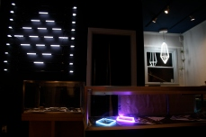 Neon installation for Shipsong/Kimberly Baker Jewelry